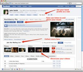 Reverb Nation gives your Facebook fan page more flexibility