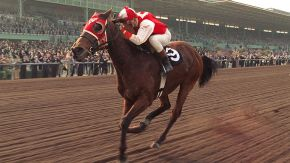 Why Seabiscuit Is A Magical Film For Horse Lovers Gt Movie