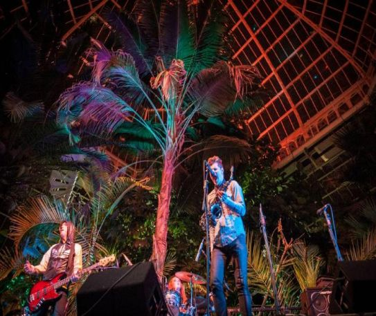 Sefton Park Palm House to host this year's Liverpool International Music Festival (LIMF)