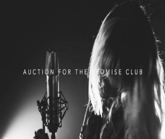 Auction For the Promise Club announce video for new single Moonlight