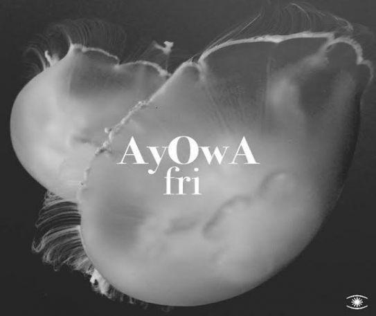 Danish duo AyOwA drop new single 'Fri' (Listen)