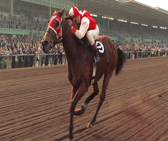 Why Seabiscuit is a magical film for horse lovers