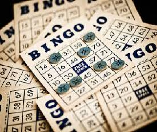 Essential things to know about Bingo