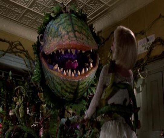 8 fun facts about Little Shop Of Horrors