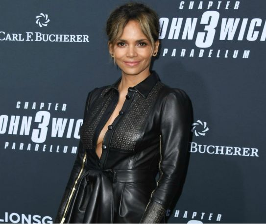 Halle Berry Exits Role as Trans Character