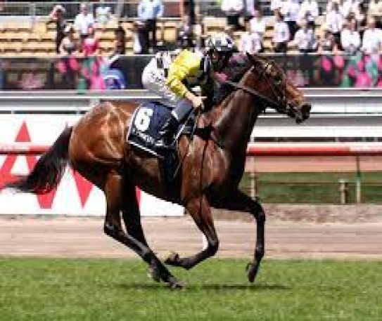 The 4 Most Celebrated Melbourne Cup Horses